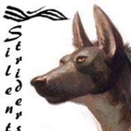 CoyotesSon